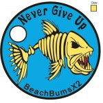 Tag # 19445 Added 11/16/2011 Never Give Up! By: BeachBumsX2